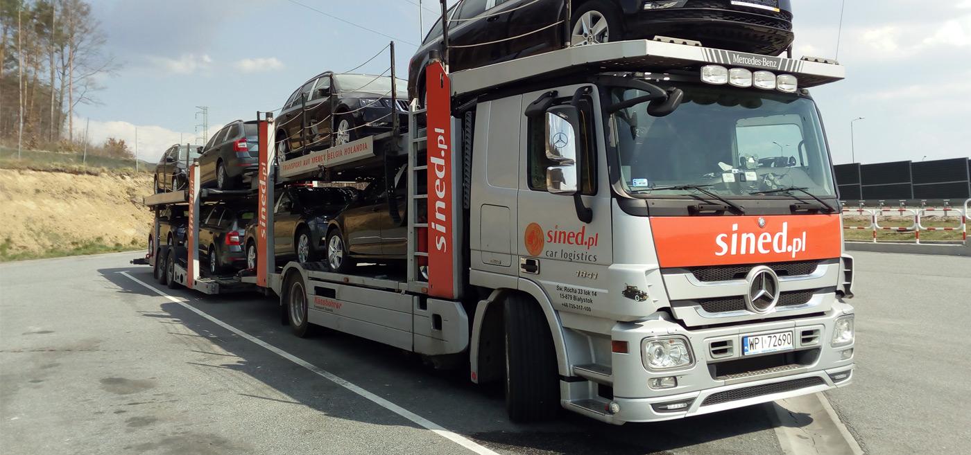 lory i lawety z Belgii, Holandii i Niemiec