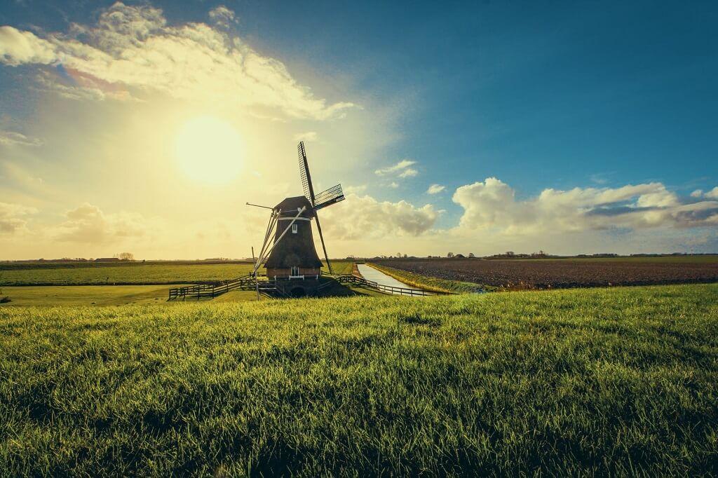 Dlaczego warto kupić auto z Holandii?